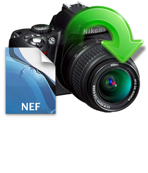 Convert Nef Files To Jpg Pdf Png Tiff And More Zamzar