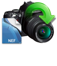Convert NEF to JPG, PDF, PNG and TIFF