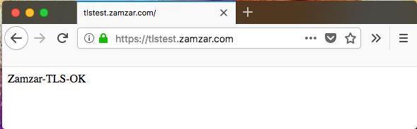 tls-browser